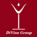 DiVino Group